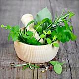 Keilrahmenbild Gartenkräuter - MODERN, Holzwerkstoff (50/50/2cm)