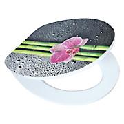 WC-Sitz High Gloss Asia - Multicolor, MODERN, Holzwerkstoff (37/43,5cm)